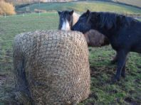 Round bale slow feeder net up to 6ft diam bales